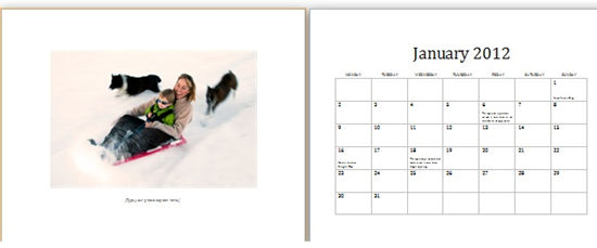 Basic 12 Month Photo Calendar