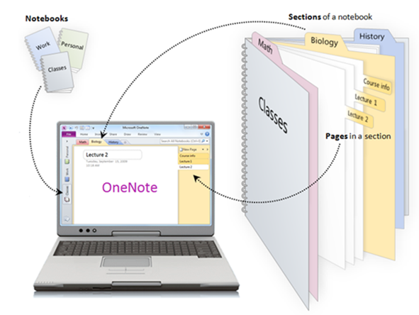 How to Organize Data with Microsoft OneNote