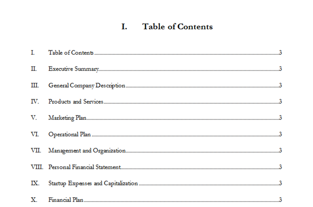 business plan table of contents example in word