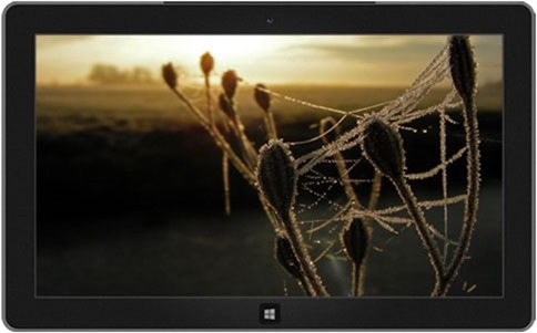 wintry webs - Windows 8 Winter Themes