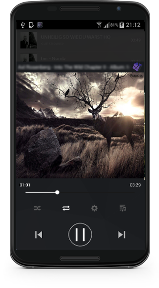 music cube FLAC music player app