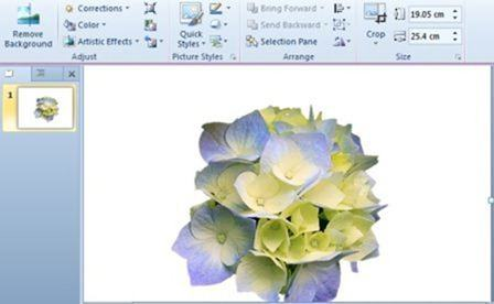 Remove a Picture Background in PowerPoint 2010