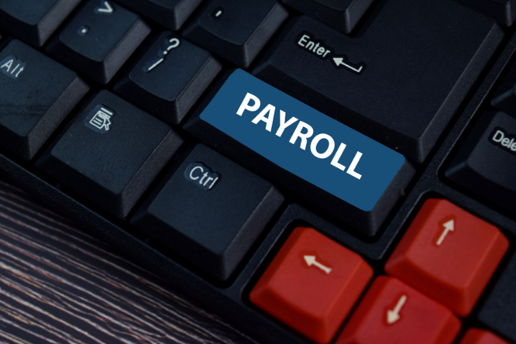 Reporting with a Payroll Management System